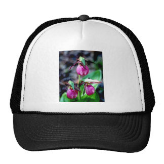 Lady Slipper I, Pink Green Garden Delight Trucker Hat