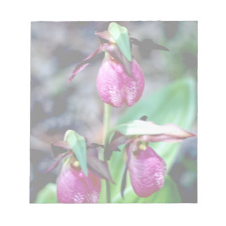 Lady Slipper I, Pink Green Garden Delight Memo Note Pad