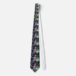 Lady Slipper I, Pink Green Garden Delight Tie
