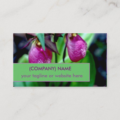 Lady Slipper I, Pink Green Garden Wild Flower Business Card