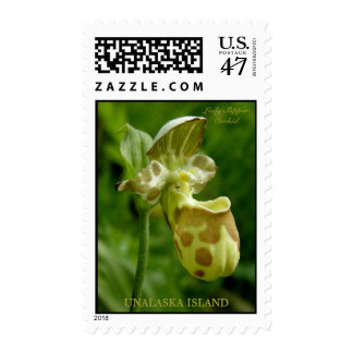 Lady Slipper Orchid (Cypripedium guttatum) Postage