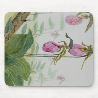Lady Slippers Mouse Pad