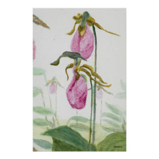 Lady Slippers Stationery