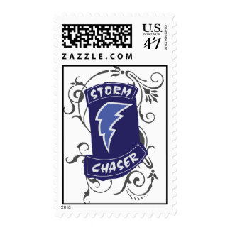 Lady Storm Chaser Postage