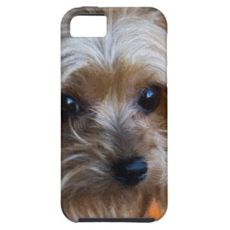 Lady Yorkshire Terrier iPhone SE/5/5s Case