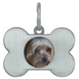 Lady Yorkshire Terrier Pet ID Tag