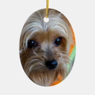 Lady Yorkshire Terrier Puppy Ceramic Ornament