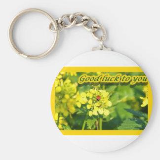 Ladybird Beetle Marienkäfer Good luck Viel Glück Basic Round Button Keychain