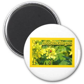 Ladybird Beetle Marienkäfer Good luck Viel Glück 2 Inch Round Magnet
