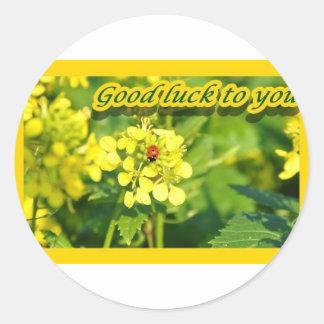 Ladybird Beetle Marienkäfer Good luck Viel Glück Classic Round Sticker