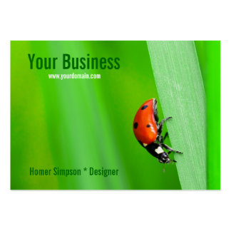 Ladybird Large Business Cards (Pack Of 100)
