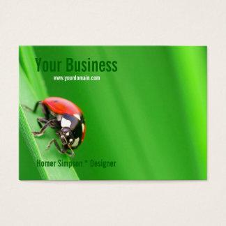 Ladybird Business Card