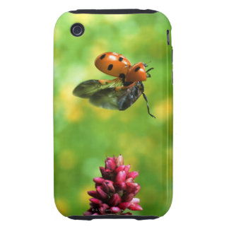 ladybird iPhone 3 tough case