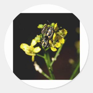ladybird classic round sticker