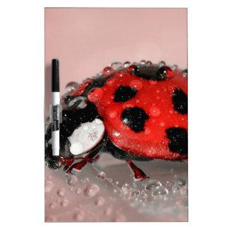 Ladybird Dry-Erase Board