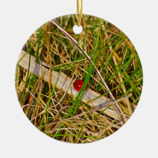 Ladybird in the grass picture Double-Sided ceramic round christmas ornament