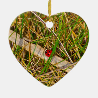 Ladybird in the grass picture Double-Sided heart ceramic christmas ornament