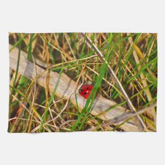 Ladybird in the grass picture kitchen towels