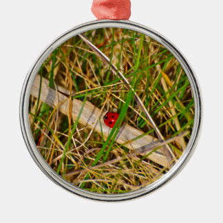 Ladybird in the grass picture round metal christmas ornament