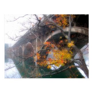 Ladybird Lake Bridge in Fall - Austin Texas Postcard