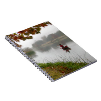 Ladybird Lake Fishing - Austin Texas Notebook