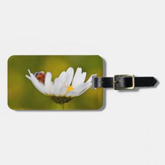 Ladybird Luggage Tag w/ leather strap