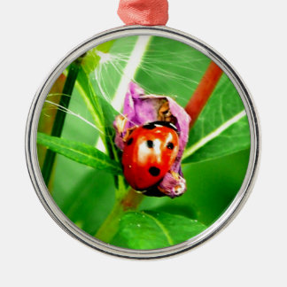 Ladybird Metal Ornament