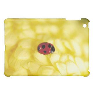 Ladybird on a yellow chrysanthemum iPad mini cover