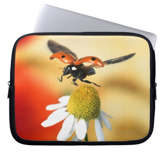 ladybird on flower 2 laptop sleeve