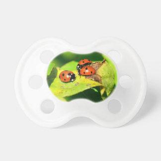 Ladybird Baby Pacifiers