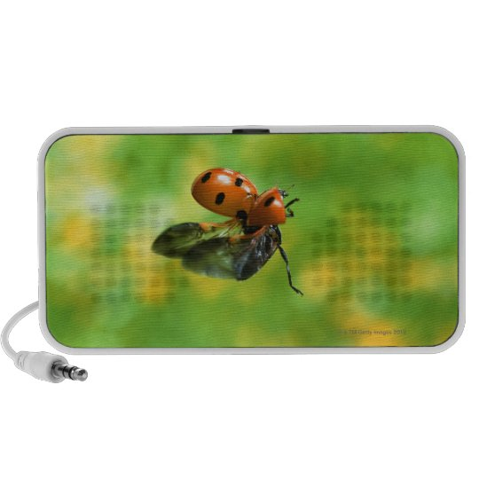 ladybird portable speaker