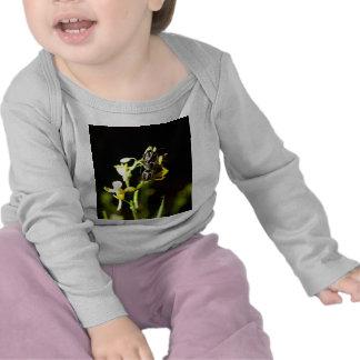 ladybird t-shirts
