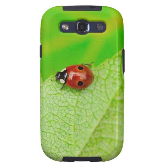 Ladybird walking across a leaf samsung galaxy SIII case