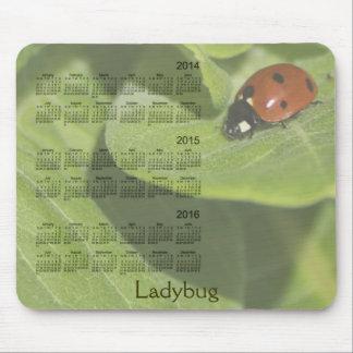 Ladybug 3 Year 2014-2016 Calendar Mousepad