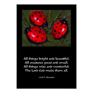 LADYBUG ALL THINGS BRIGHT POSTER