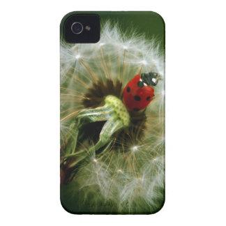 Ladybug And Dandelion iPhone 4 Cover