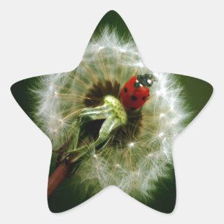 Ladybug And Dandelion Sticker