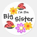Ladybug and Flowers Classic Round Sticker