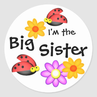 Ladybug and Flowers Classic Round Sticker