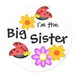 Ladybug and Flowers Sticker