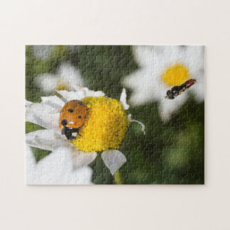 Ladybug and Hover Fly Jigsaw Puzzle