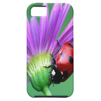 Ladybug And Purple Flower iPhone 5 Covers