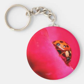 Ladybug and the Rose Keychain