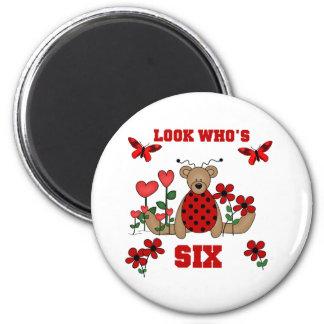 Ladybug Bear 6th Birthday 2 Inch Round Magnet