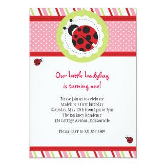 "Ladybug Birthday Invitation 5"" X 7"" Invitation Card"