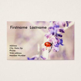 Ladybug Business Card