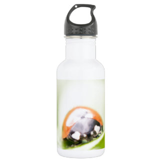 Ladybug by Tutti Water Bottle