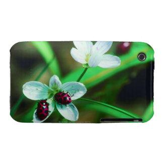 Ladybug iPhone 3 Case