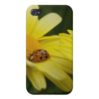 ladybug case for iPhone 4