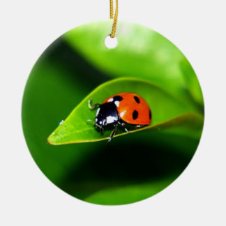 Ladybug Ceramic Ornament